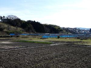 加賀藩塩硝蔵発掘