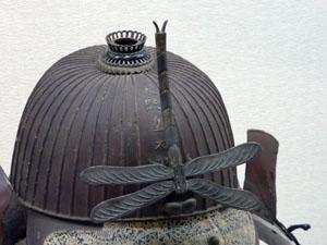 石川県立自然史資料館 企画展「人とトンボ展」