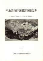平出遺跡群発掘調査報告書 県道長野・荒瀬原線バイパス工事に伴う発掘調査