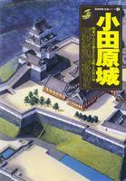 小田原城 関東の入口を押さえた武略と治世の城 [歴史群像名城シリーズ8]