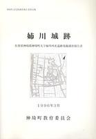 姉川城跡 発掘調査報告書 神埼町文化財調査報告書第50集