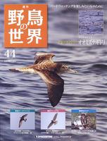 週刊野鳥の世界 第44号 オオミズナギドリ