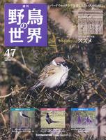 週刊野鳥の世界 第47号 スズメ