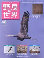 週刊野鳥の世界 第48号 ナベズル