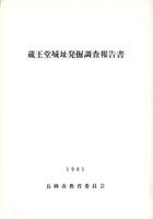 蔵王堂城址発掘調査報告書