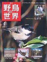 週刊野鳥の世界 第4号 ヒガラ