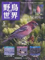 週刊野鳥の世界 第5号 ギンザンマシコ