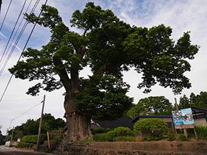 徳田郵便局