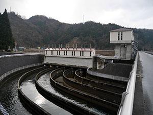富山 常願寺川沿岸地区のお米
