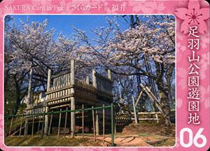 足羽山公園遊園地 さくらカード