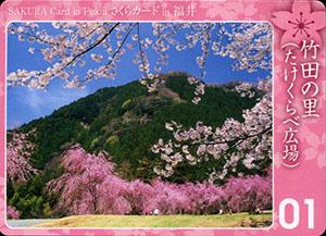 竹田の里(たけくらべ広場) さくらカード