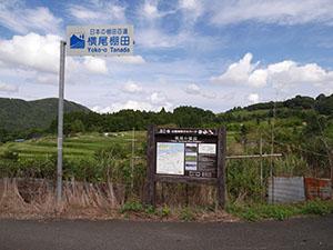 横尾(棚田百選)