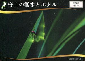 守山の湧水とホタル 日本遺産滋賀カード