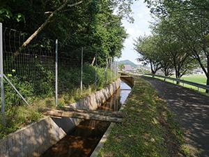 荒井用水 福井県美浜町