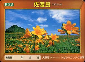 佐渡島 離島カード