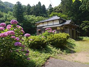 観音菩薩立像(青蓮寺) 福井県美浜町