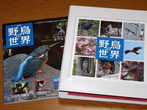 「週刊野鳥の世界」