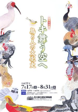 夏期特別展「トキ舞う空へ」 石川県立歴史博物館