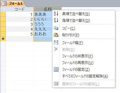 Access2010 データシート フィルター機能を無効化