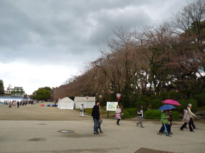 名古屋城 春まつり