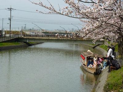 第6回能瀬川公園桜まつり