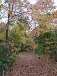 金沢城 本丸跡