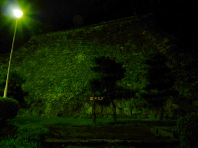 盛岡城の夜景
