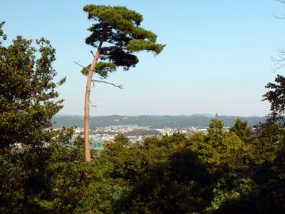 金沢野田山 加賀前田家墓所