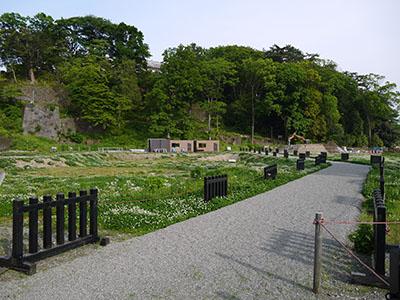 玉泉院丸庭園整備